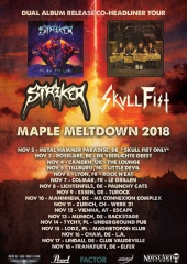 STRIKER: Europatour im November